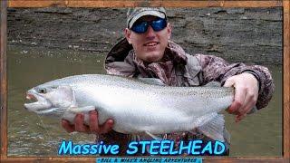 Massive muddy water Steelhead Video