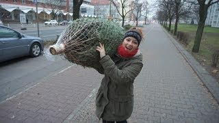 Familienleben - Weihnachtsbaum I Mellis Blog