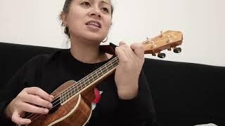 The guns of Brixton (cover) The Clash ukulele