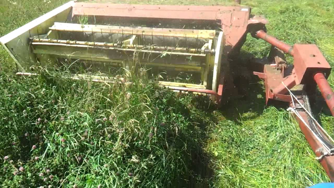 Cutting hay youtube cutting hay fandeluxe Choice Image