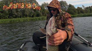 Рыбалка на Оке в середине сентября