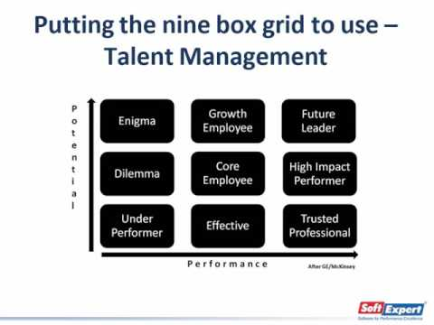 "Unveiling the performance and potential matrix - ""9 Box"" 