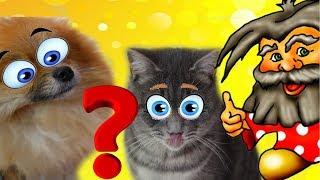 В НАС ВСЕЛИЛСЯ ДОМОВОЙ! Кот Макс и щенок Алиса просят помощи!