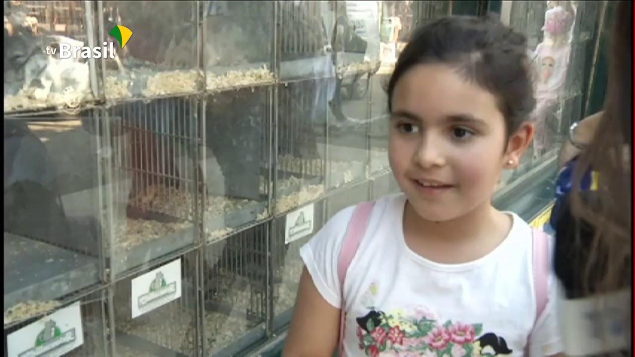 Expointer: seção de animais de estimação faz sucesso com crianças