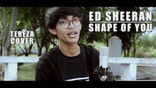 ED SHEERAN - SHAPE OF YOU (Cover By Tereza)