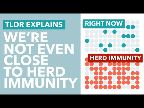Why We're Not Achieving Coronavirus Herd Immunity & How it Impacts a 2nd Wave – TLDR News