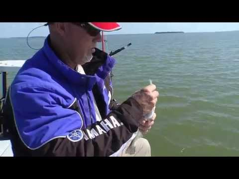 Key Largo Sea Trout - Sportsman's Adventures with Captain Rick Murphy