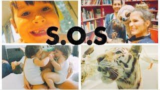 LAIA PERDIÓ UN DIENTE 😱 CAPTURA de ANIMALES...así PIENSAN los NIÑOS?? #SwissVlog DÍA 3