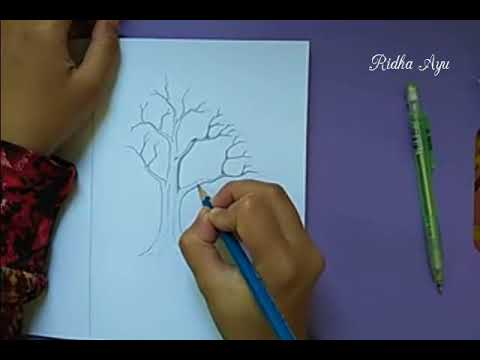 Draw Tree Without Leaves Menggambar Pohon Tanpa Daun Youtube