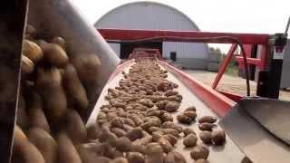 Maine Potato Board |
