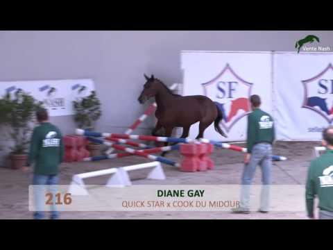 N°216 - Diane Gay - NASH 2016