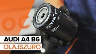 AUDI A4 B6 és olajszűrő csere [ÚTMUTATÓ]