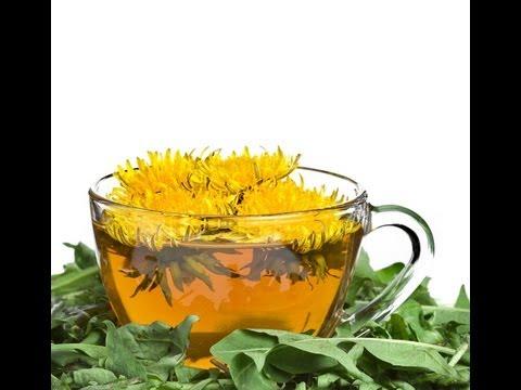 DANDELION FLOWER TEA BENEFITS: Health Benefits | Side Effects