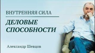 Александр Шевцов. Раскрытие деловых способностей