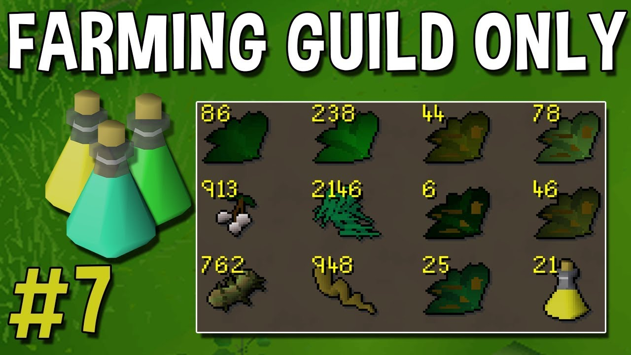 I Have Found a Weird Way to Train Herblore in the Farming Guild! - Farming  Guild Only #7 [OSRS]