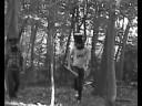 Minotaur Trailer
