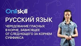 Русский язык 6 класс: Чередование гласных в корне, зависящее от следующего за корнем суффикса