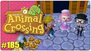 Animal Crossing | NL #185 ★ Hony, Tyraphine, m00sician im Schnee