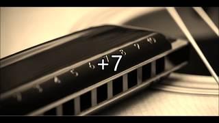 Johnny Cash - Hurt - G Harmonica