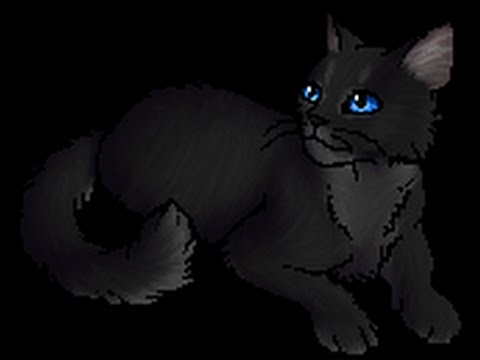 Top Ten Prettiest Warrior Cat Medicine Cat She-Cats
