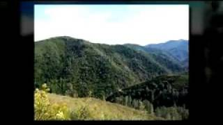 Shasta County Land For Sale - Platina, CA