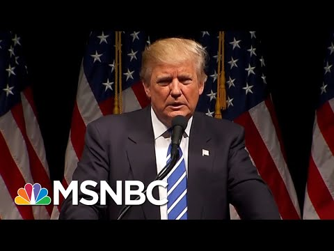 How Michael Cohen Pleading The 5th Could Backfire On Donald Trump | The Beat With Ari Melber | MSNBC