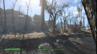 Fallout 4 flickering issue PS4