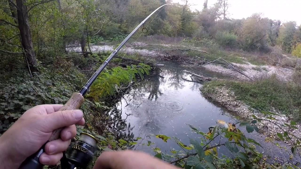Ловля ротана осенью: на что лучше ловить для мега улова?