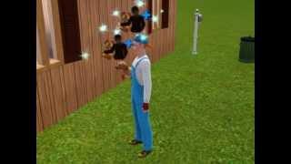 Harvest Moon Sims:  Arrival