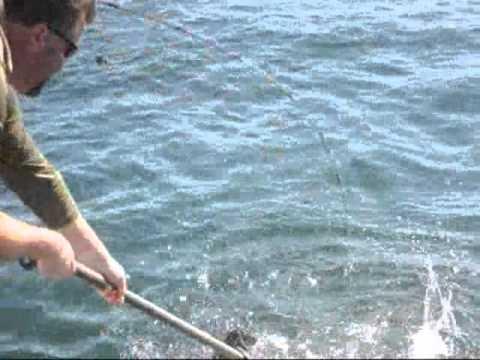 great-fishing-....fishing-for-king-salmon-in-kodiac-alaska