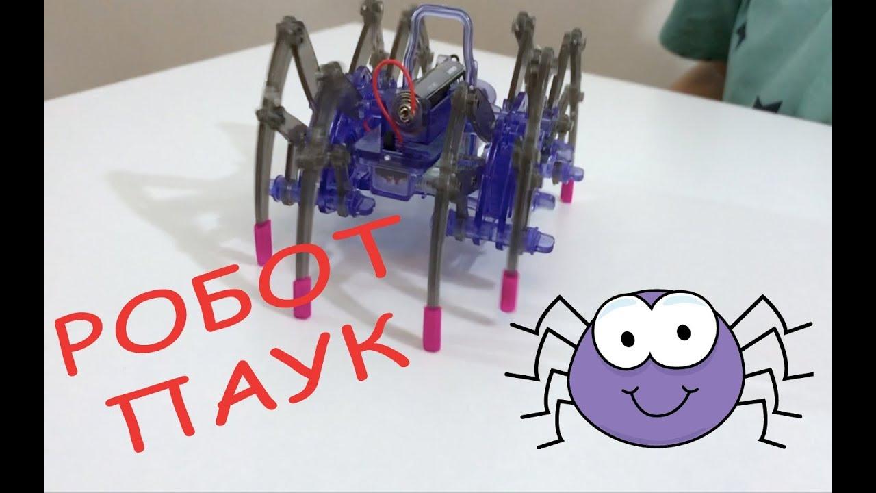 Как сделать робота-паука