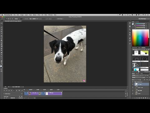 How to Create an Animated GIF from a Video in Photoshop CC