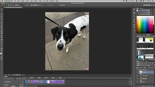 How to Create an Animated GIF from a Video in Photoshop CC(In this episode of Adobe Creative Cloud TV, Terry White shows how to import video and stills in to Photoshop CC, edit them together and export as an Animated ..., 2015-09-28T22:12:06.000Z)