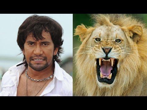 असली शेर' के साथ फिल्म की शूटिंग करेंगे निरहुआ | Dinesh Lal Yadav Nirahua