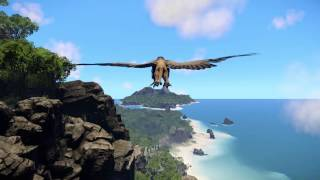 Wander - Griffin Flight School, Wander Twitch Live Stream
