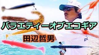 【田辺哲男&折本隆由】バラエティーオブエコギア VARIETY OF ECOGEAR thumbnail