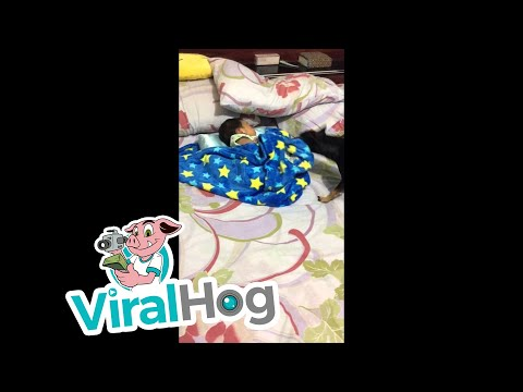 Dog Tucks In Family Baby || ViralHog