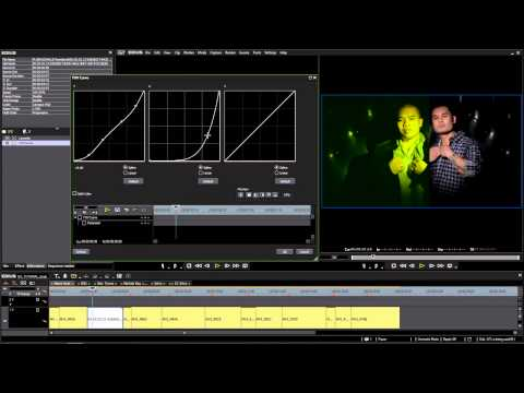How To Instal or Add Hollywood FX In Edius With Ashi Malik | FunnyCat TV