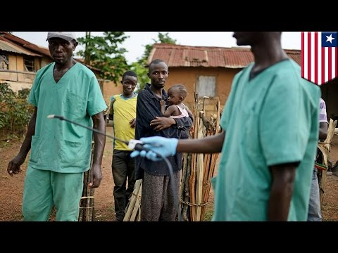 Ebola: worst-ever outbreak in West Africa leave more than 700 dead