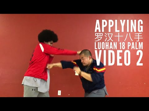 Kung Fu Applications | Luohan 18 Palm  | Part 2