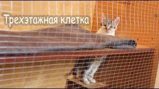 Делаем клетку кошке и котятам