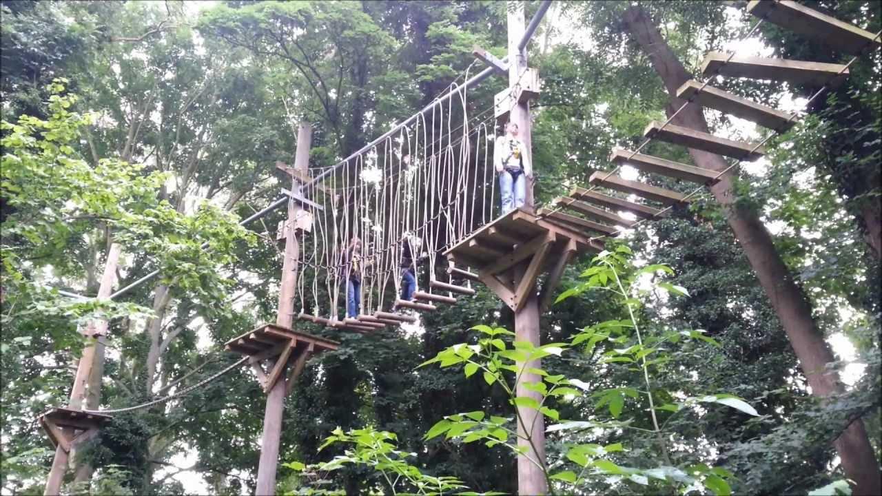 Treetop Challenge Youtube