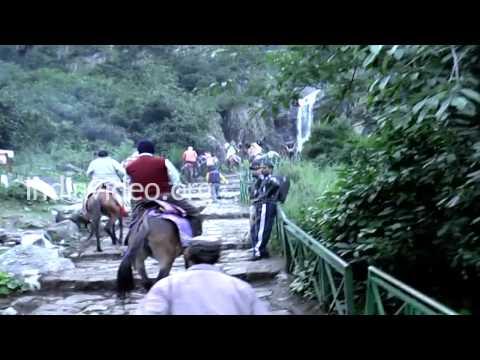 Pony ride at Ghangaria Village, Uttarakhand