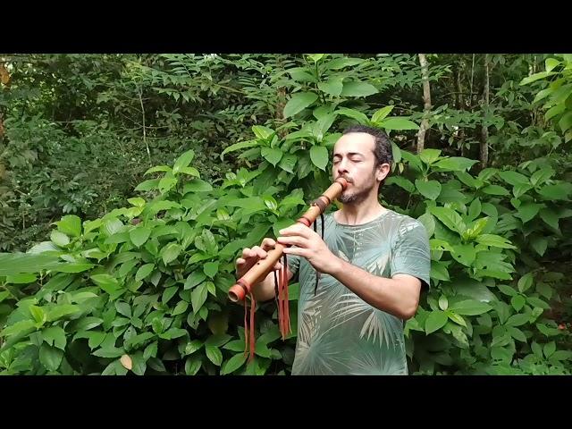 Flauta NAF River Cane F#