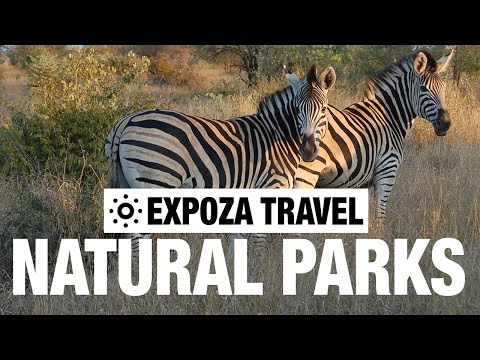 Natural Parks: The Beginning (Africa) Vacation Travel Video Guide