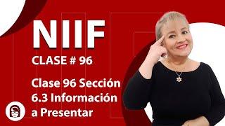 886. Clase 96 Sección 6.3 Información a Presentar en el Estado de Cambios en el Patrimonio