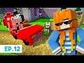 A Brand New Car! | One Life Season 2 - Minecraft SMP | Ep.12 | Marielitai Gaming