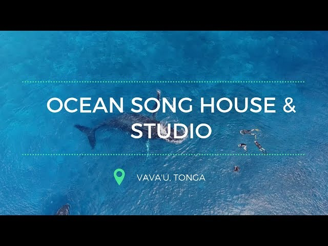 Ocean Song House and Studio | Vava'u, Tonga // S1E5