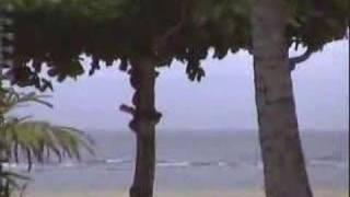 인나 그랜드 발리 리조트-사누르 비치 아직은 신혼여행으…
