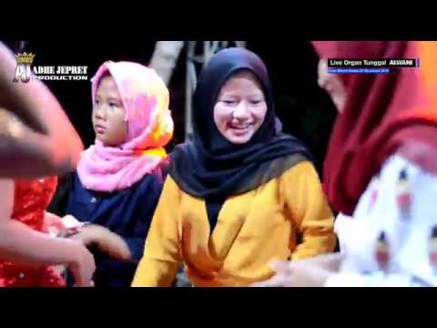 Pengen Disayang || Organ Tunggal ALWANI_2019 || KPL Ds.Sukamulya Kec.Cilamaya Kab.Karawang